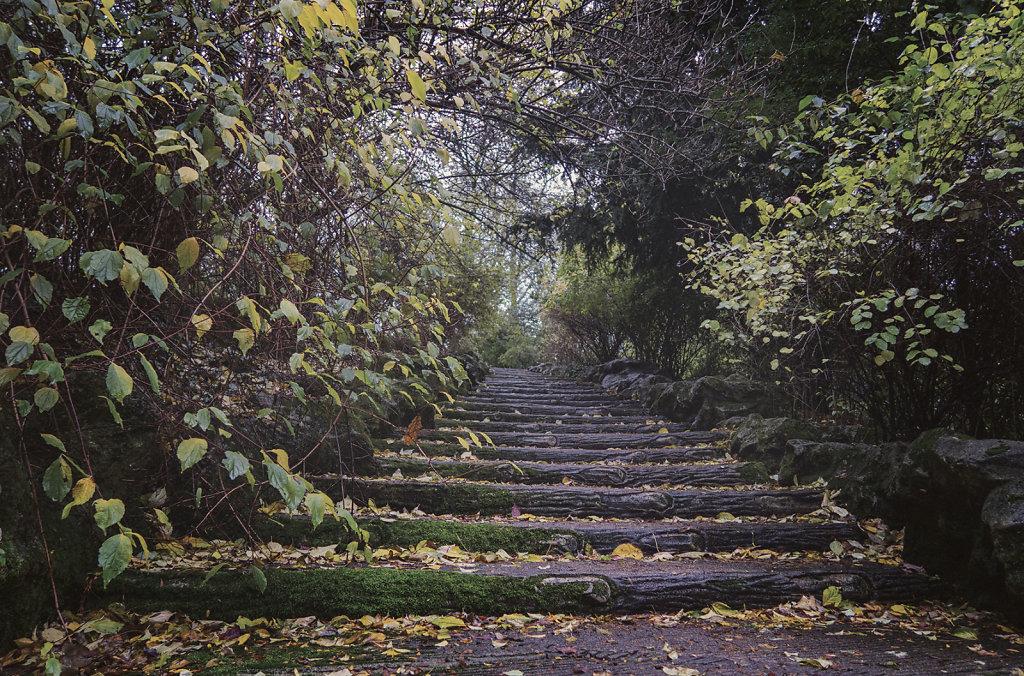 Les escaliers des Buttes Chaumont