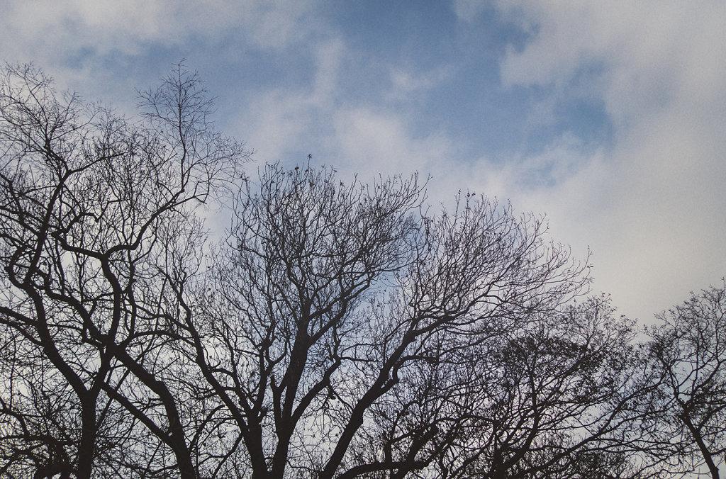 Le ciel du parc des Buttes Chaumont