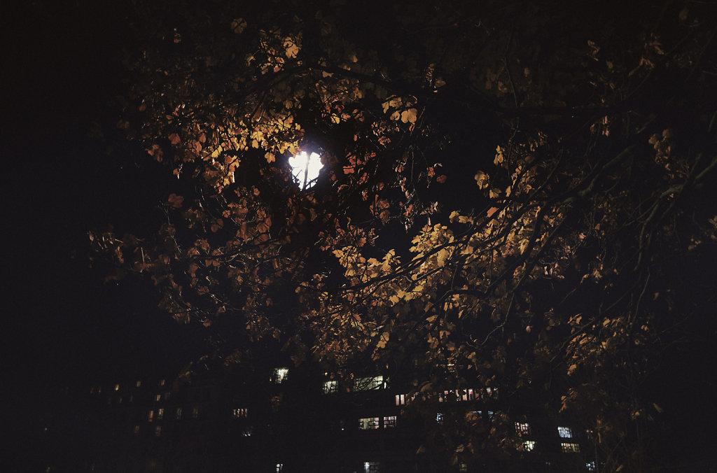 La nuit au parc des Buttes Chaumont